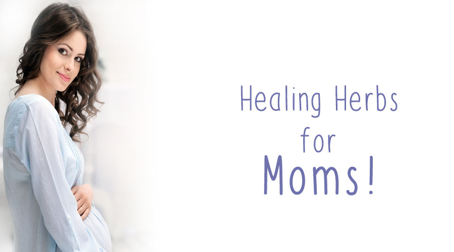 Healing Herbs for Moms!